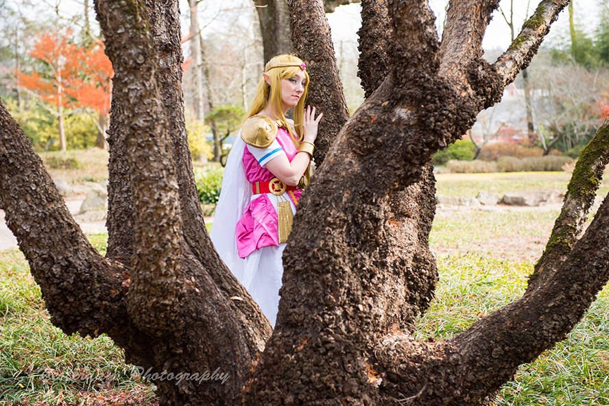 Princess-Zelda- Link-Between- Worlds-3